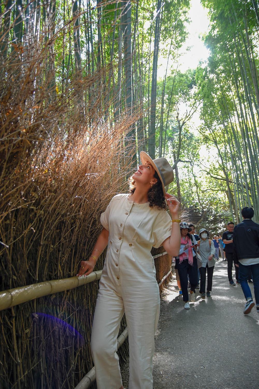 יפן, יער הבמבוקים, קיוטו