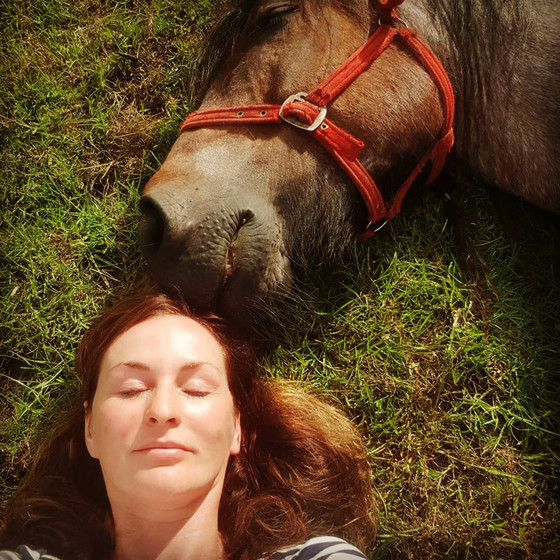 Horse therapy, meditation, yoga amazing food... a day of bliss next weekend!