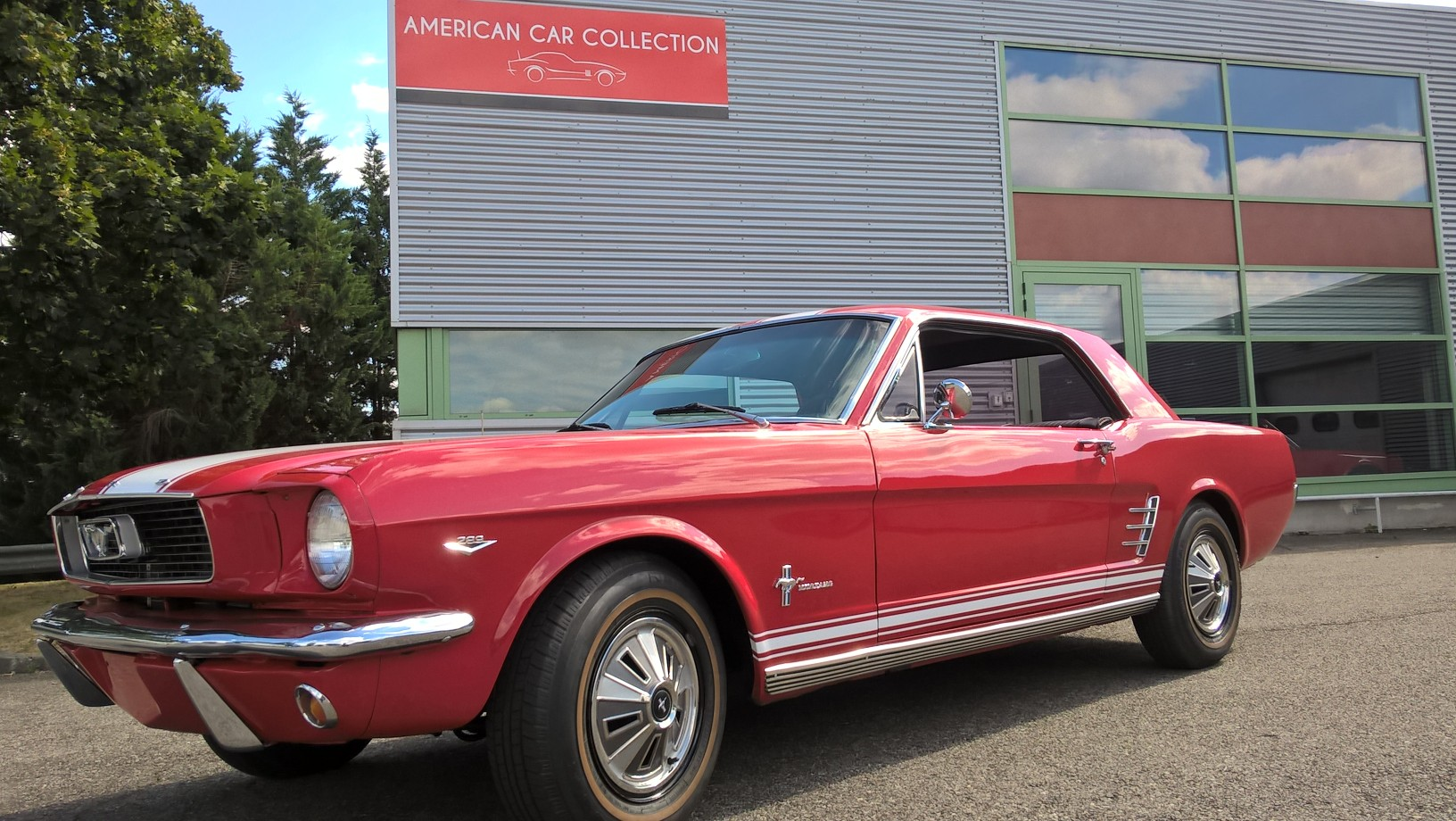 MUSTANG ROUGE 1