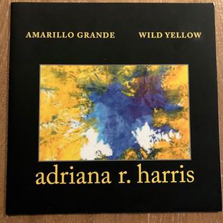 Wild Yellow-Amarillo Grande
