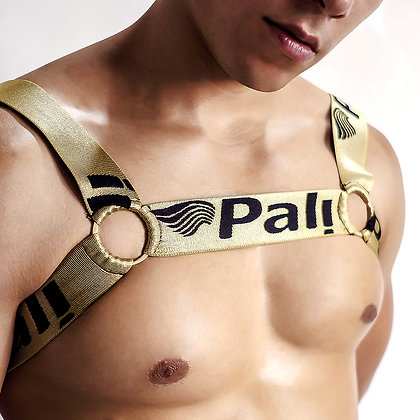 Pali Sexy Men's Elastic Golden Colored Body Chest Straps Gay Harness Club Wear