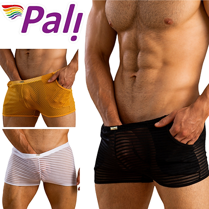 Pali Transparent Mesh Sheer Sexy Lingerie Boxer Briefs See-through For Gay Men