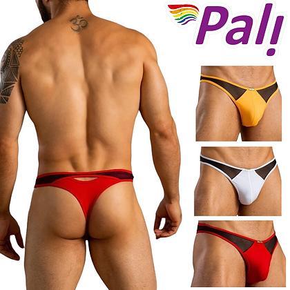 Pali Lingerie Underwear Brief Men's Gay Men's Sexy Bikini Thong Side Mesh Solid