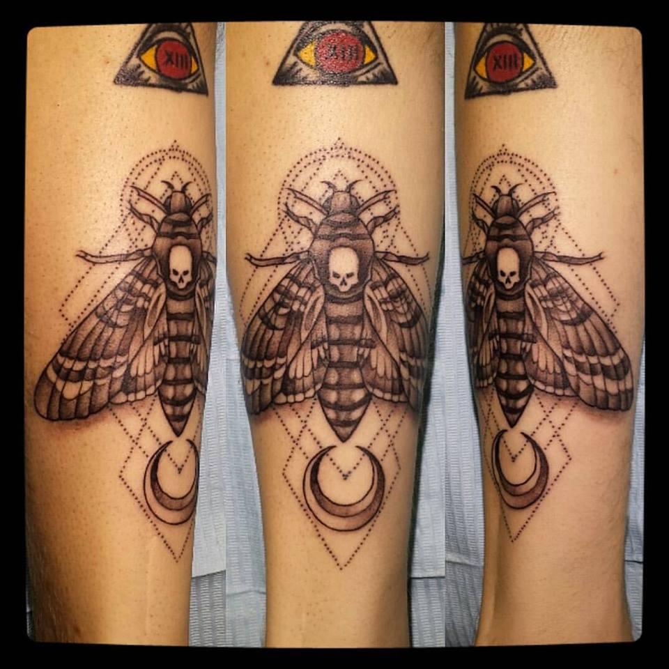 moth stiple