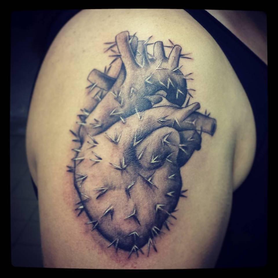 catus heart
