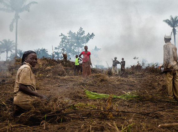 At the exit of Kananga, the agricultural recovery begins. So weeds are burned for better replanting.
