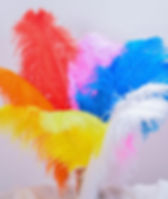 colored featherss.jpg