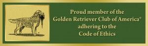golden-logo-for-websitestory-002-300x93.