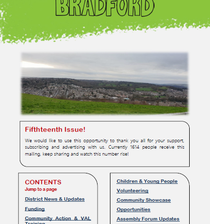 Have you read issue 15 of Briefing Bradford yet?
