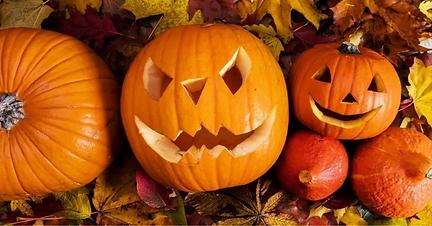 baby-pumpkin-1024x536.webp