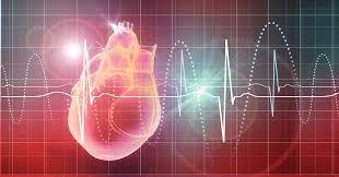 Cardioplegía de Del Nido en adultos