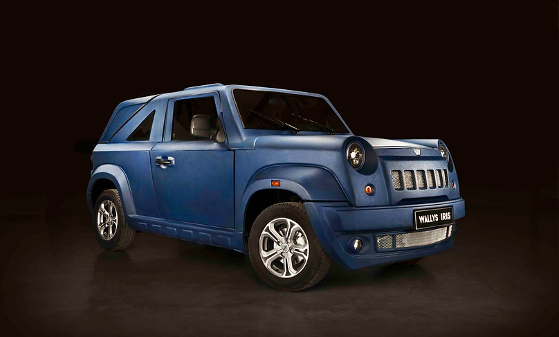 Wallys Automobiles تونس