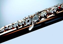 gold flute flipped - Copy (2).jpg