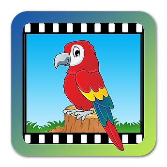 Video Touch - Birds_shadow.png