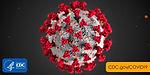 2019-coronavirus.png.jpg