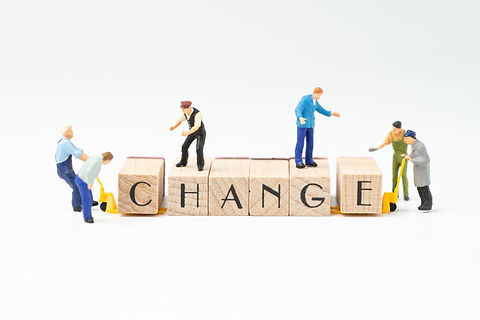 Business change, transform or self devel
