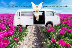Sonho de Maurílio(Raul) - Alceu dos Anjos