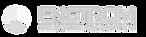 Enstrom Logo.png
