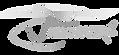 V2 Logo.png