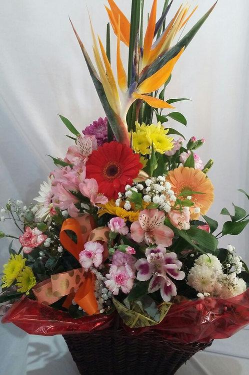 Cestas com flores variadas.
