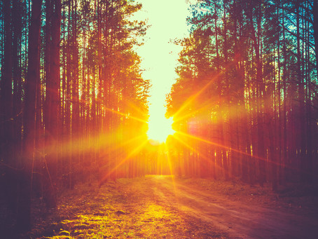 Enjoy the Sunshine!