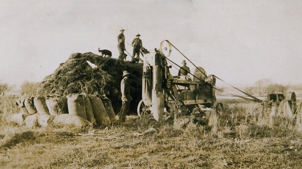 Farming-Chaffcutting_Bagging_the_Chaff-L