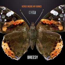 Breesy Album Cover