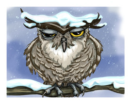 Grumpy Owl 8x10 Print