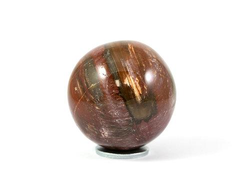 Sphère Bois fossile 49mm