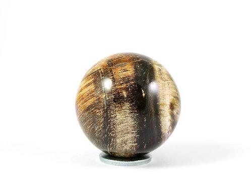 Sphère Bois fossile 48mm