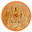 Lion_feature_03.png