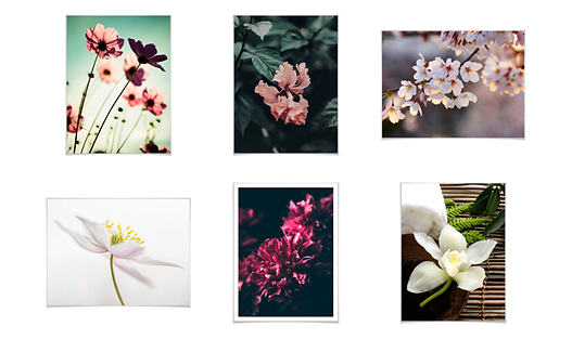Flowers_Result.png