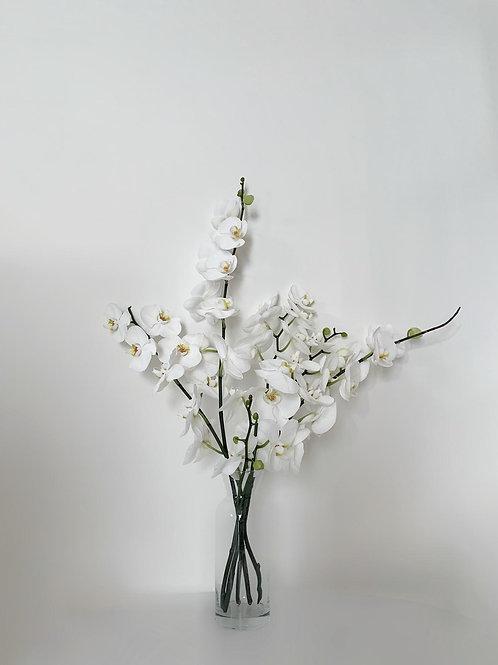זר סחלבים לבן- 5 ענפים
