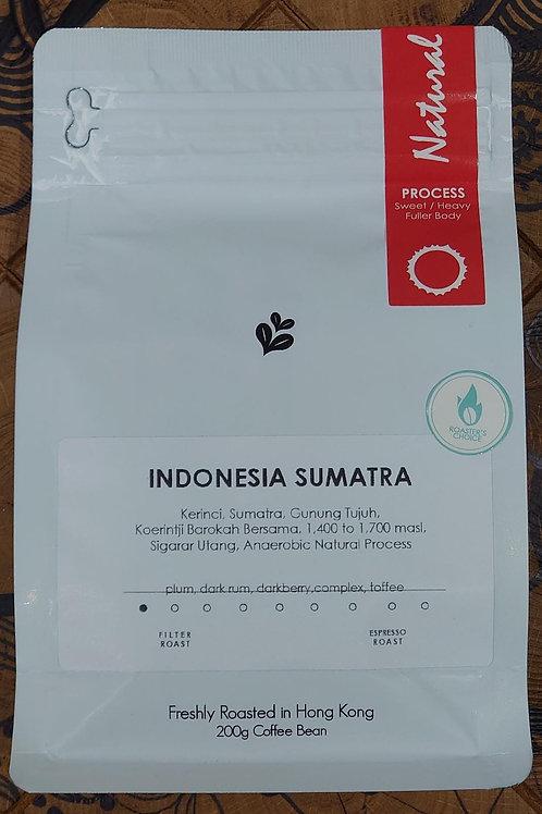印度尼西亞Kerinci Gunung Tujuh Sumatra厭氧自然