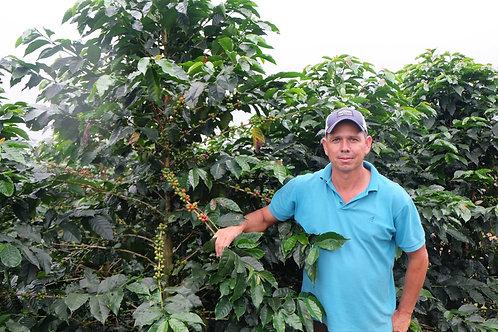哥斯達黎加La Perla SL28金蜂蜜100克