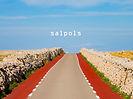 Projecció-Salpols2.jpg