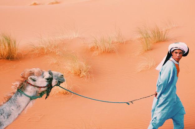 Tour pelo deserto (3 dias)