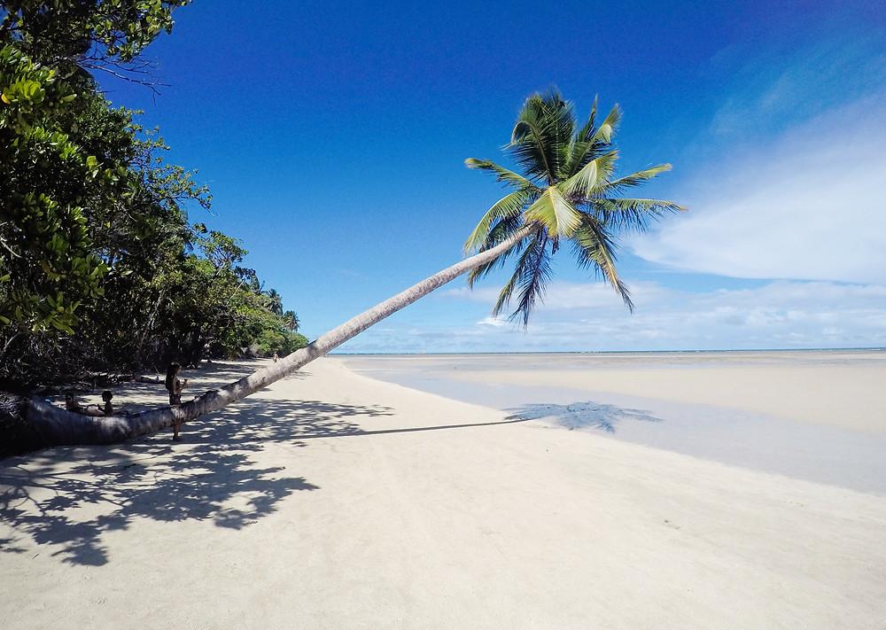 praia coqueiro