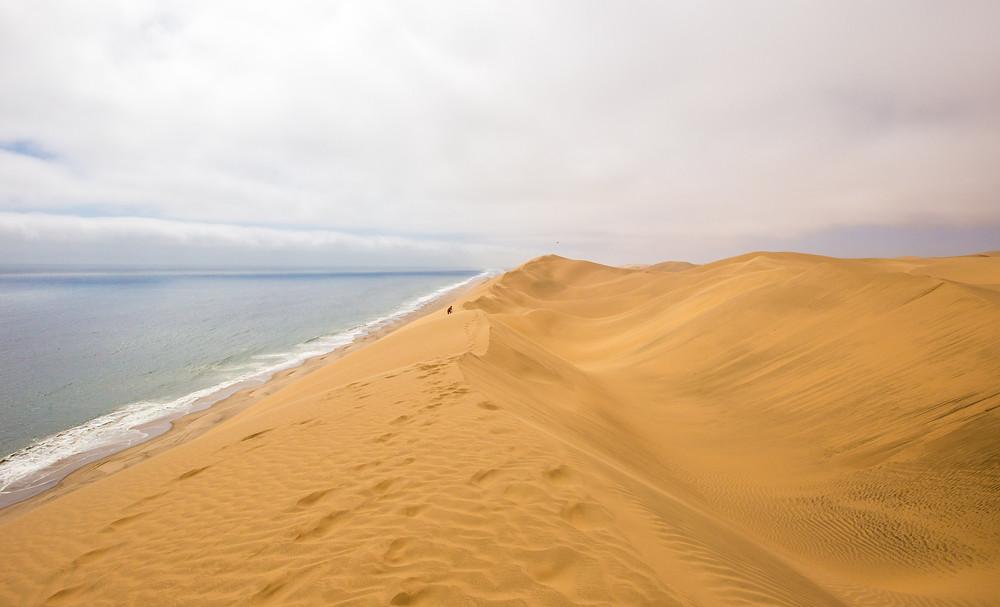 duna deserto mar