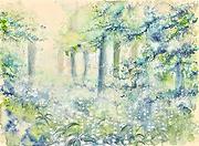 中和する森
