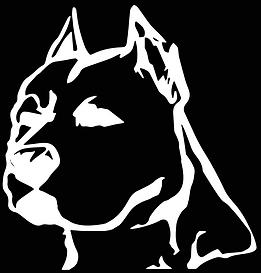 Legacy Apparel Logo_edit1.png