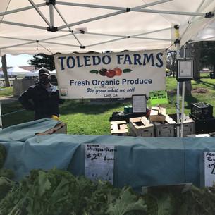 Toledo Organic Farm