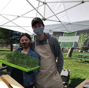 Eco Friendly Greens