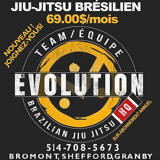 evolutionPubMensuel copy.jpg