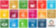 SDG 1-17.PNG