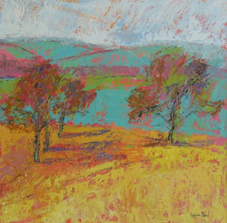 Trees in Yellow Field