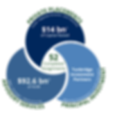 Business Overview Graphic 2020-01.png