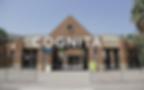 cognita2.jpg.png