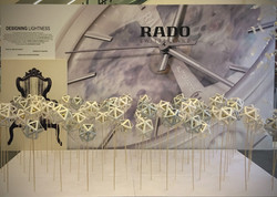Rado - harbour city roadshow