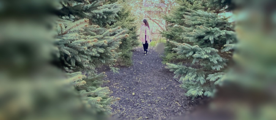 How To Practice  Mindful Walking?